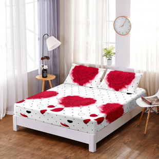 Set cearceaf de pat din bumbac finet cu elastic, 160x200 cm cu 2 fete de perna, Ralex Pucioasa - Jenn