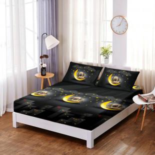 Set cearceaf de pat din bumbac finet cu elastic, 160x200 cm cu 2 fete de perna, Ralex Pucioasa Selina